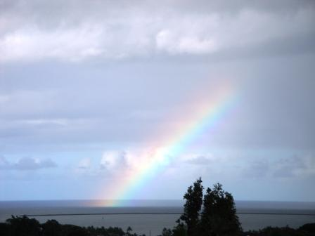 Hilo Bay Rainbow